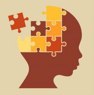 hjernen, puslespill