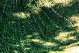 Vannstråler i sommervarmen